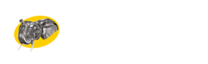 logo energreen - professional machines