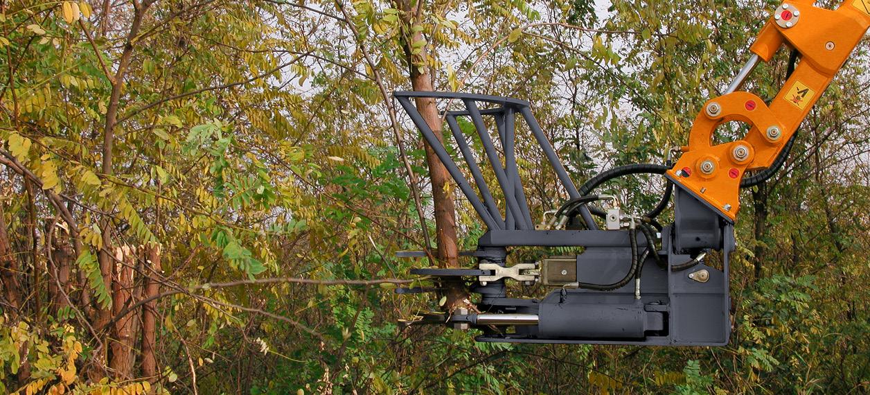 attrezzature professionali - extra trunk - pinza - lavori forestali - energreen macchine professionali