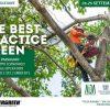 Alberi e paesaggio: lo sviluppo economico visto dagli operatori del verde e dell'ambiente
