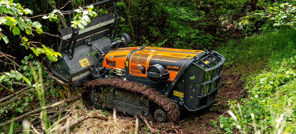 robo - robomidi - forestry head - testata forestale - lavori forestali - energreen macchine professionali